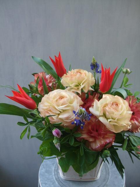 オークリーフ(赤い花)_f0049672_13455522.jpg