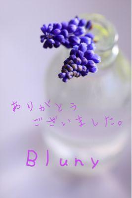 b0099276_0541795.jpg