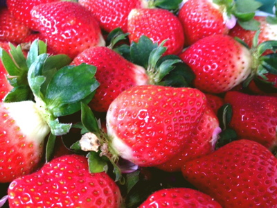 苺の季節_f0232994_12957.jpg