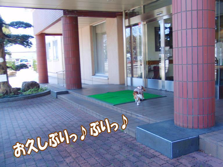 b0279153_2012425.jpg