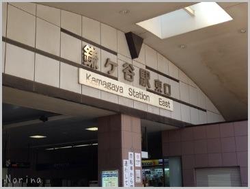 はじめて鎌ヶ谷ファーム⚾️_e0326953_0143243.jpg