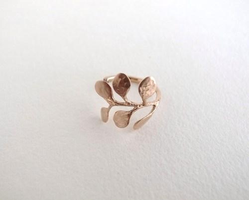 オーダー:植物モチーフのリング。_c0243355_1042082.jpg