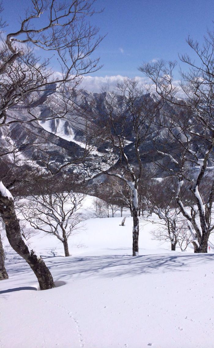 3月なのに最高day☆苗場_c0151965_21392624.jpg