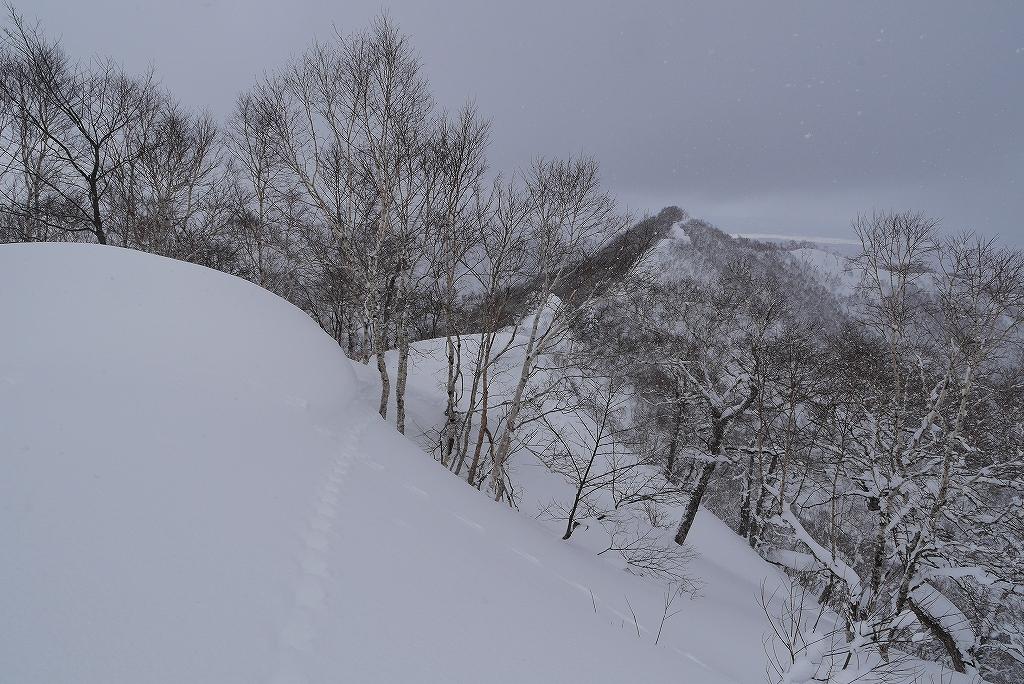 紋別岳、3月12日_f0138096_1851744.jpg