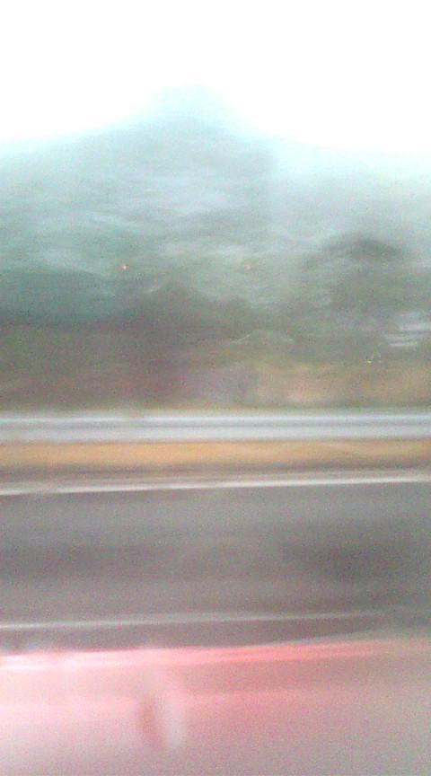 暖かい雨です_e0094315_835574.jpg