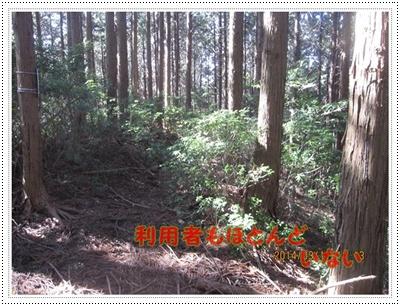 f0193521_1848774.jpg