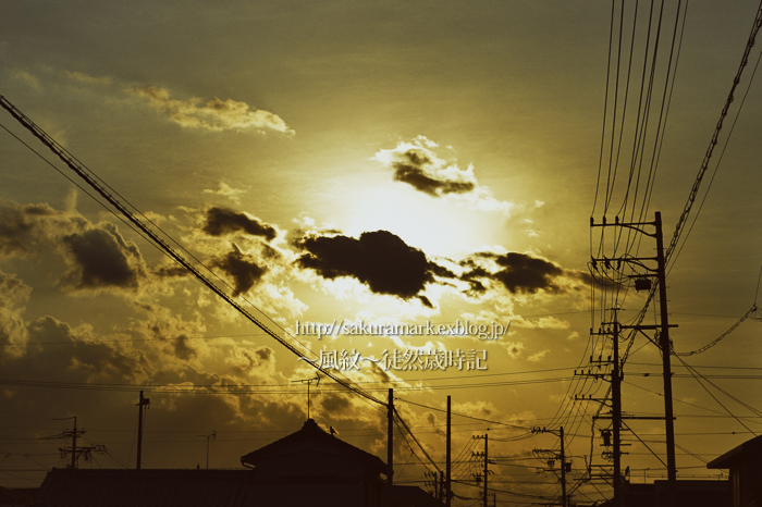 chrome yellowの空。_f0235723_2014564.jpg