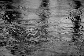春の雨の日_a0267845_22181585.jpg