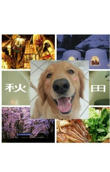 秋田パーティー_e0001906_045693.jpg