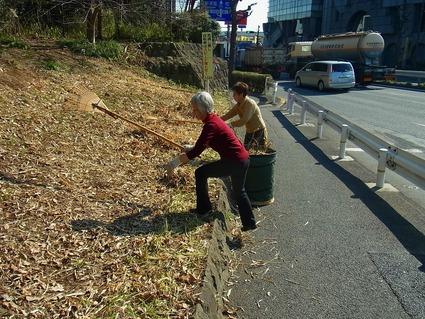 ヨシ刈りと道路沿いの落ち葉はき_b0049307_18304626.jpg