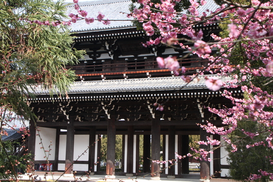 涅槃会 東福寺_e0048413_19345572.jpg