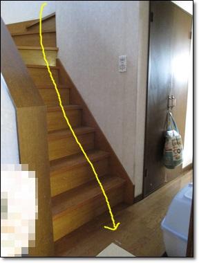 地震と猫とぶりこ_b0151748_12281508.jpg