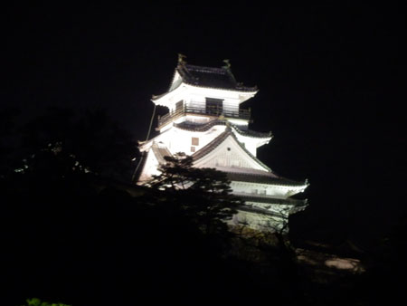 高知城とグルメ探訪 高知・四万十・松山の旅3_e0048413_16403027.jpg