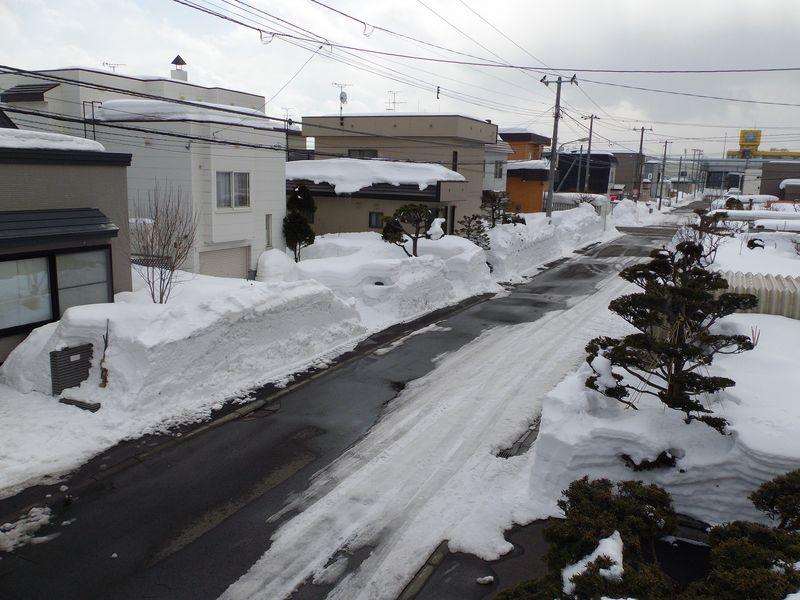 雪解け進むかに思えたものの_c0025115_22493871.jpg
