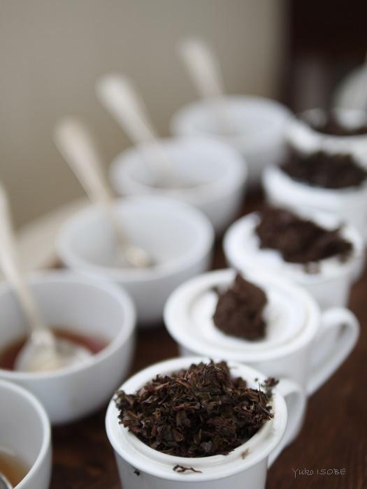Tea Tasting_a0169924_9334865.jpg