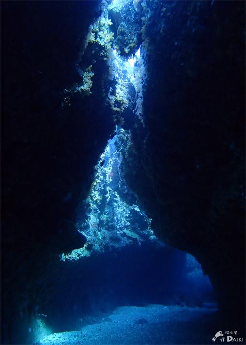 ブルーの海でウミウシ探し☆みなべ・田辺_e0158261_7304150.jpg