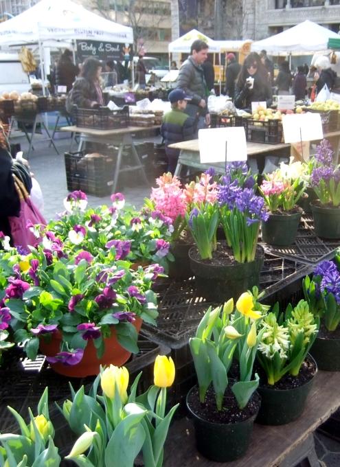 NYユニオン・スクエアの青空市場に春の気配_b0007805_183895.jpg
