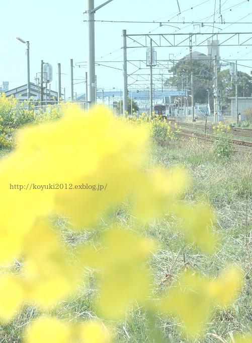 b0283619_21214360.jpg