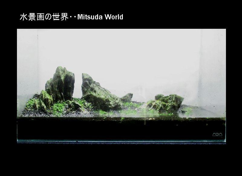 石組み水景・・出水市役所展示予定作品!_a0046952_1665527.jpg