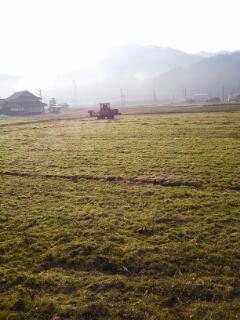 春は,作業から_f0071456_2226014.jpg