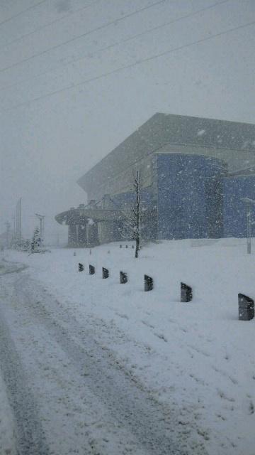 春の雪_a0029157_15402542.jpg