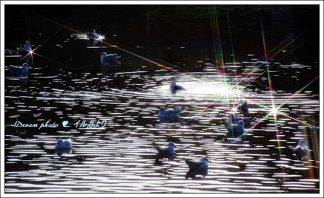 f0304384_1927104.jpg