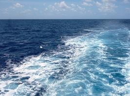 太平洋に真白き引き波立てて_a0043520_2342717.jpg