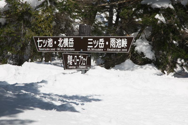 雪山散歩_c0167028_2282441.jpg