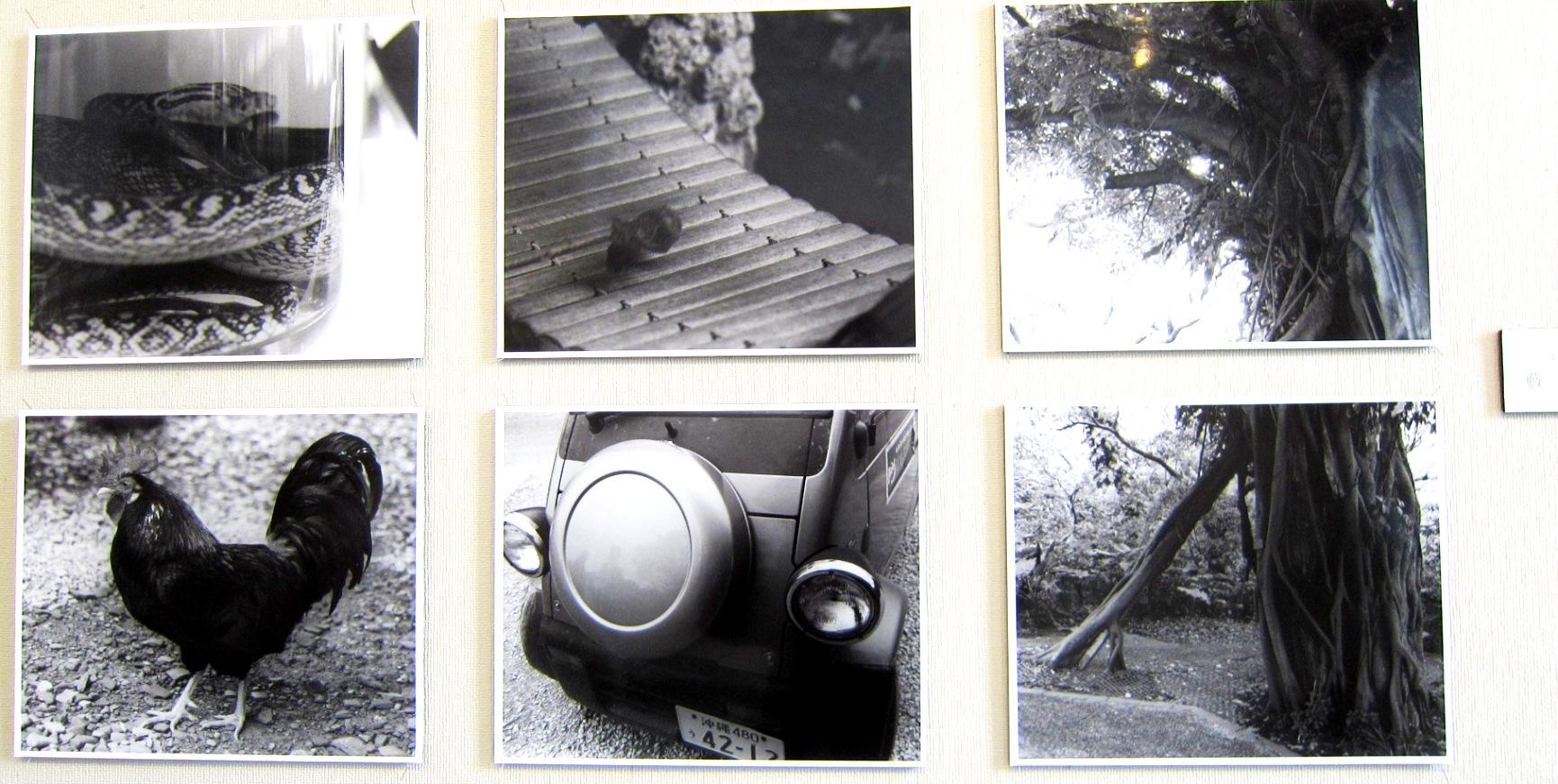 2372) 「小樽商科大学 写真部 三月展」 資料館 終了/3月11日(火)~3月16日(日)_f0126829_2128133.jpg
