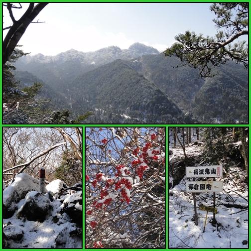 黒岩山・障子ヶ岳へ、そして花散策_e0164643_21532513.jpg