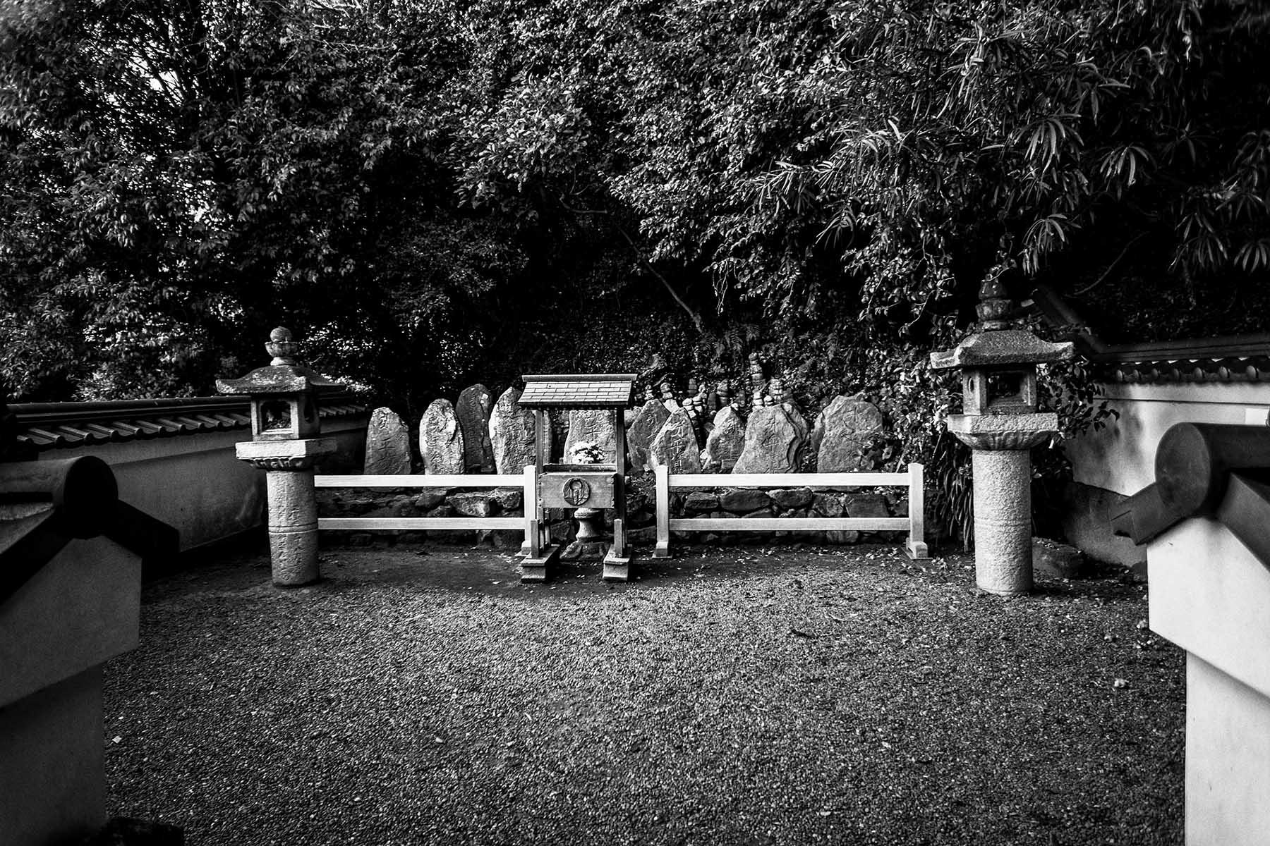 祇園精舎の鐘の声_c0028861_19312760.jpg
