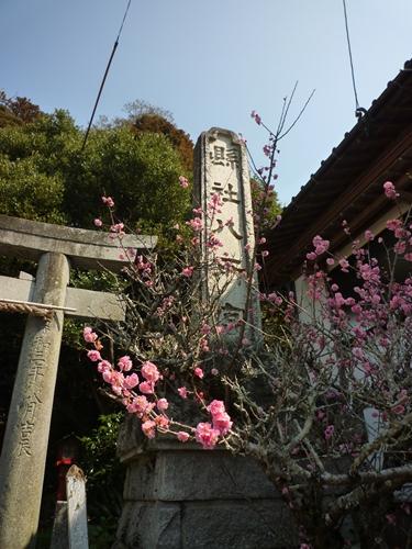 八所宮と高良御子神社 こんな共時性も_c0222861_2122667.jpg
