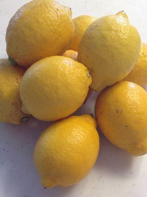 無農薬日本産レモン、ゲット!!_f0134268_169170.jpg