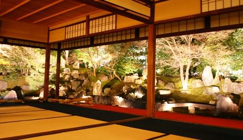 圓徳院、心静かに庭を眺める_b0067283_15244653.jpg