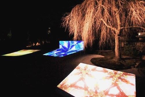 「東山花灯路2014」で高台寺&圓徳院に行ってきました!_b0067283_15563928.jpg