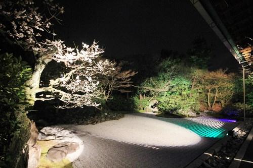 「東山花灯路2014」で高台寺&圓徳院に行ってきました!_b0067283_1557399.jpg
