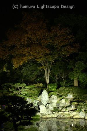 「下町秋の夜灯り」 清澄庭園 / 紅葉_f0322812_23255791.jpg