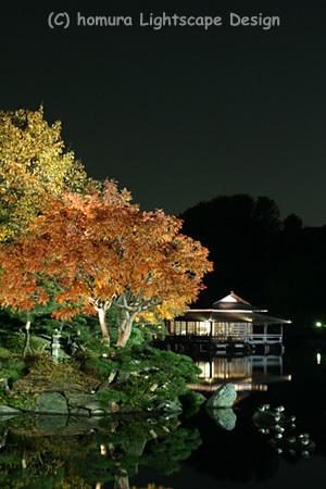 「下町秋の夜灯り」 清澄庭園 / 紅葉_f0322812_23255792.jpg