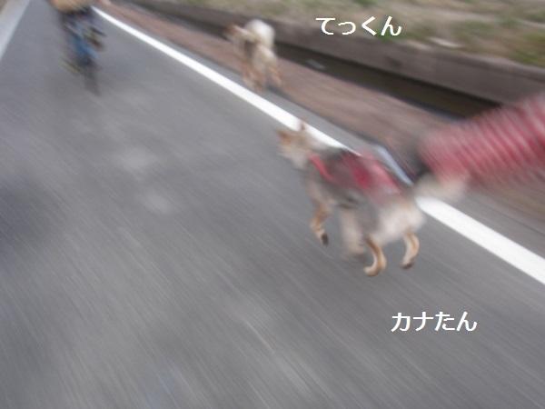 f0143123_10144820.jpg
