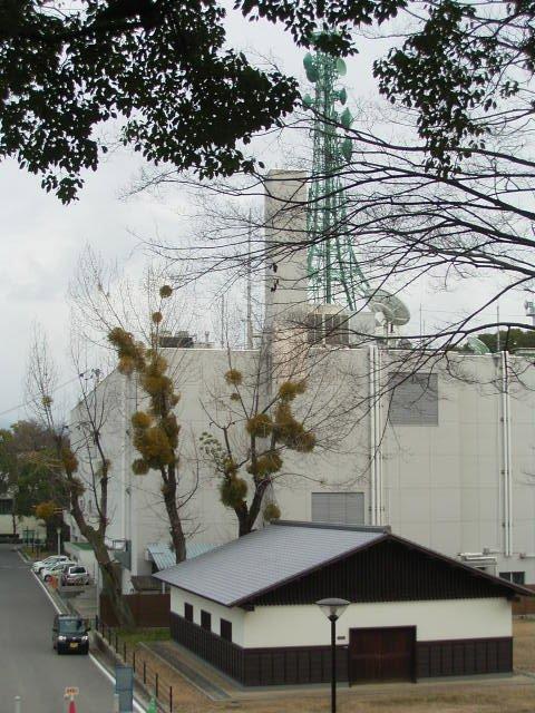 松山散歩_b0206421_15131035.jpg