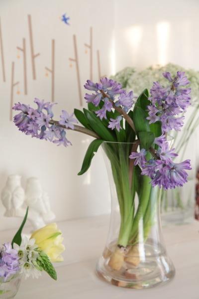切り花を長い間、楽しみましょう。_a0227137_22433372.jpg