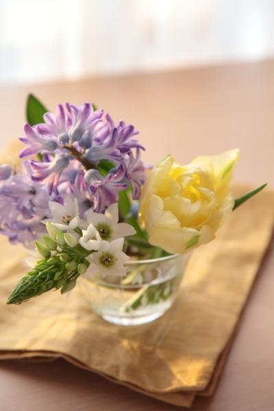 切り花を長い間、楽しみましょう。_a0227137_22442861.jpg