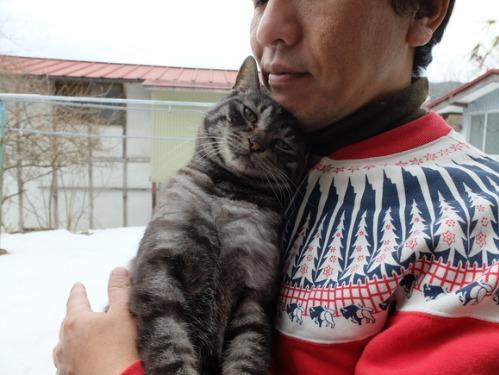猫日和 1:はじめまして_a0180681_17151960.jpg