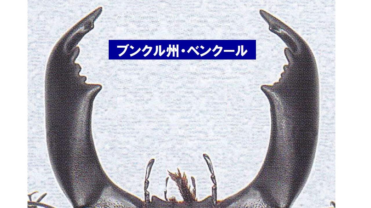 a0315918_20121878.jpg