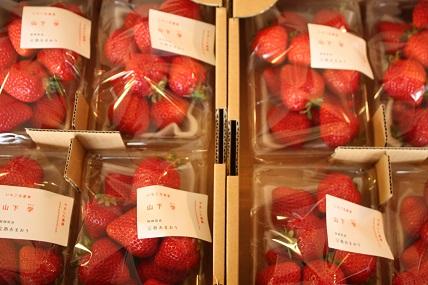 無農薬あまおういちごの販売もしています♡_c0127029_1843121.jpg