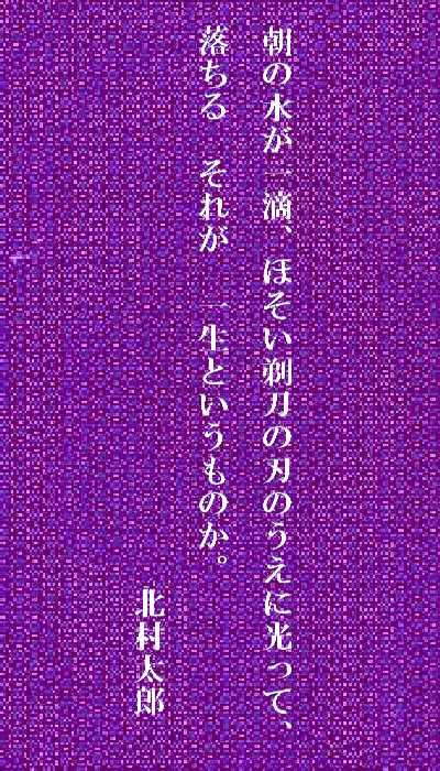f0117041_17382180.jpg