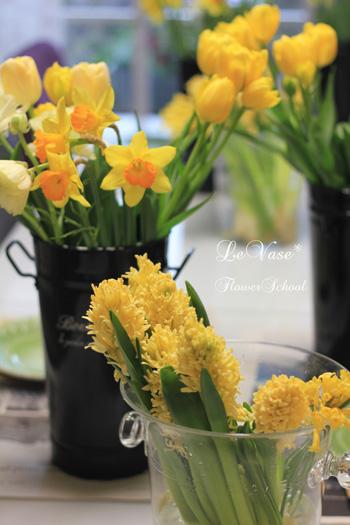 球根系のお花たちで_e0158653_23573730.jpg