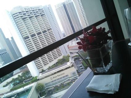 シンガポールの休日☆1日目_c0212604_1912180.jpg