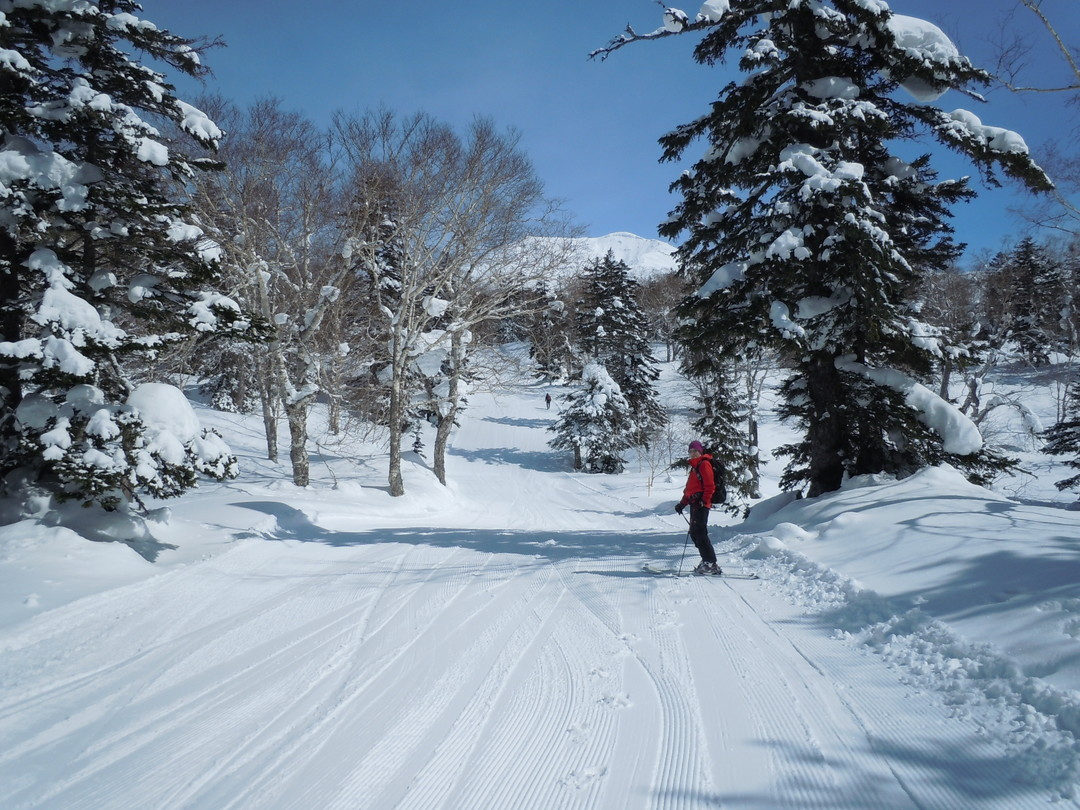 "2014年3月 『早春の大雪旭岳』 march, 2014 ""Mt Taisetsu Asahidake, Ski in the spring\""_c0219616_1933888.jpg"