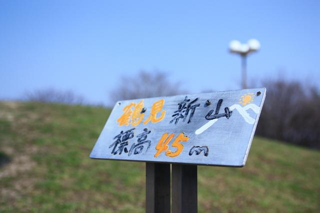 杏(アンズ)鶴見緑地_f0209122_18392642.jpg